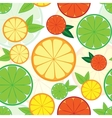 Seamless pattern with colorful citrus vector image