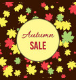 autumn fall sale poster with maple leaves vector image vector image