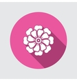 Flower icon Chamomile aster daisy vector image vector image