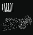 chalkboard carrot root vegetable vector image