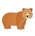 funny brown bear in cartoon style isolated on vector image vector image