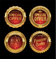 quality retro golden badges collection 1 vector image vector image