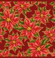 seamless pattern with poinsettia flowers vector image