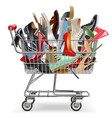 shopping cart with shoes vector image vector image