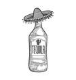tequila mexican sombrero sketch engraving vector image vector image