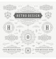 Vintage Ornaments Decorations Design vector image vector image