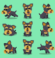 Cartoon character yorkshire terrier dog poses vector image