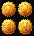 gold rank medallion vector image vector image