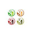 leaf health nutrition initial u v w x vector image vector image