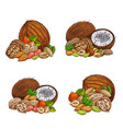 nuts and seeds sketch natural ingredients vector image