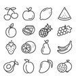 set outline fruit icons isolated vector image vector image