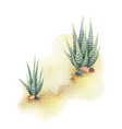 watercolor background with desert and cacti vector image vector image