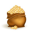 bag with golden coins vector image vector image