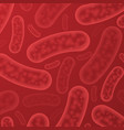 blood bacterium organisms vector image