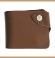 brown wallet with money vector image