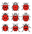 cheerful ladybugs vector image vector image