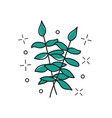 hand drawn twig - stylized plant brush vector image vector image