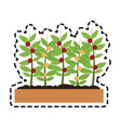 potted plant icon image vector image