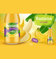 banana poster promotional advertising placard of vector image vector image