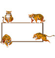 border template with four wild tigers vector image vector image