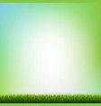 green grass and blue background vector image vector image