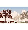Orchard pigs vector image vector image