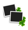 photo with clover vector image