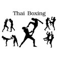 thai boxing silhouette vector image
