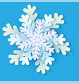 white and blue christmas paper snowflake vector image