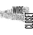 Wire closet storage systems text word cloud vector image