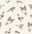 beautiful seamless pattern with flying and sitting vector image vector image