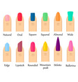 colorful fingernails with different shape vector image vector image
