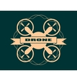 Drone quadrocopter icon Drone text vector image vector image