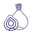 line organic onion nutrition vegetable taste vector image vector image