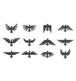 Eagles graphic element template for logo or icons