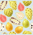 exotic fruits seamless vector image vector image