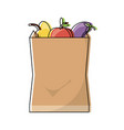 grocery bag design concept vector image vector image