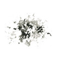 abstract ink splash vector image