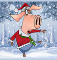 cartoon pig in christmas clothes dancing vector image vector image