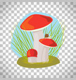 forest mushroom with grass and snail vector image vector image