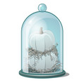 glass cover with white pumpkins and dry straw vector image