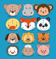 little and cute animals group vector image