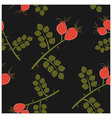 Seamless pattern rosehip vector image vector image