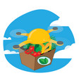 shipping drone delivering fresh food vector image vector image