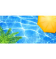 swimming pool top view vector image vector image