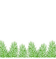 twigs green christmas spruce vector image vector image