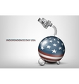 USA independence day with flag and vector image vector image
