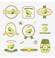 Lime set of label design vector image