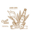 beer emblem brown vector image vector image