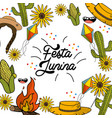 brazilian things to celebrate festa junina vector image
